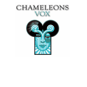 Chameleons Vox at the Nottingham Rescue Rooms. 6th December 2013 Live Review