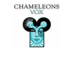 Chameleons Vox at the Nottingham Rescue Rooms. 6th December 2013 Live Review