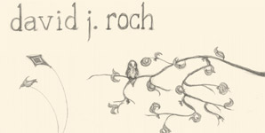 David J. Roch - Skin and Bones Album Review