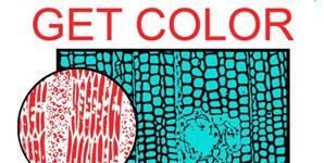 Health - Get Colour