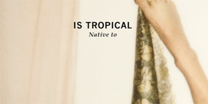 Is Tropical - Native To