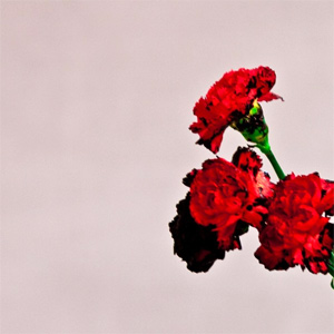 John Legend - All Of Me Single Review