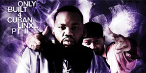 Raekwon - Only Built 4 Cuban Linx, Pt II