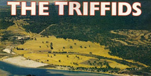 The Triffids - Wide Open Road, The Best Of...