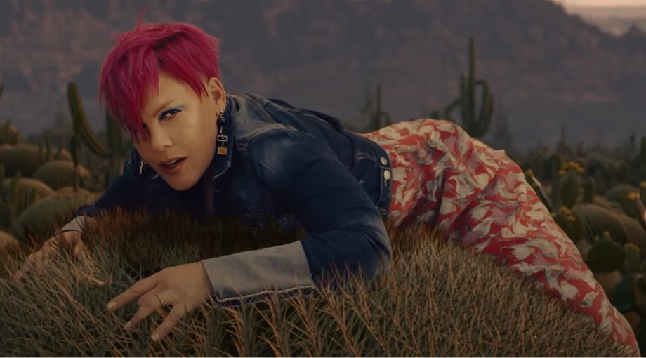 P!nk - All I Know So Far Video Video
