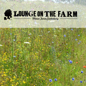 Lounge On The Farm Festival 2013 Returns With Seasick Steve & Soul Ii Soul On The Line-up Plus Many More.