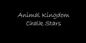 Animal Kingdom Chalk Stars Single
