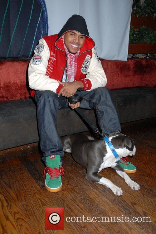 Chris Brown and His Dog 6