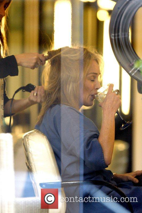 Sharon Stone and The Hair