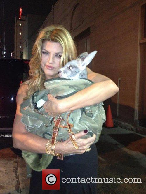 Kirstie Alley, I and Twitter 1