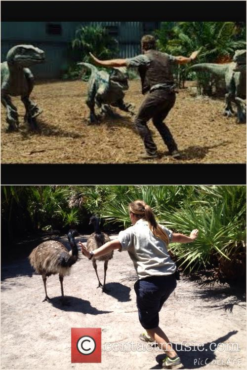 Chris Pratt and Brevard Zoo