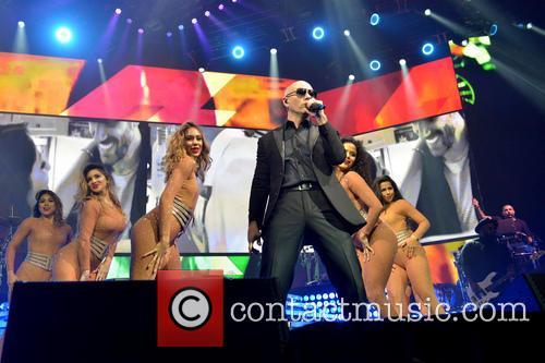 Pitbull 3