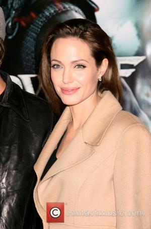 Jolie To Fly Family Around The Globe