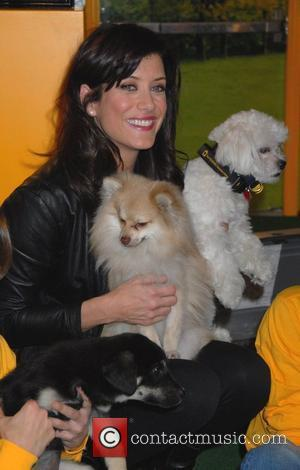 Walsh Opens Dog Adoption Shelter