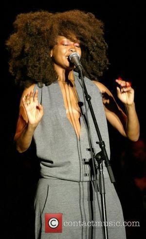 Erykah Badu performs live as part of the Martin Luther King Jr Concert Series at Wingate Field New York City,...