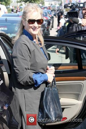 Streep's Girl Lands Tv Break