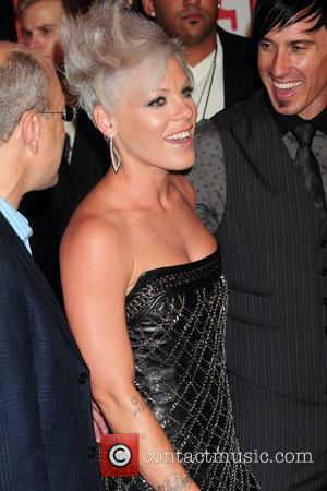 Pink Stopped By Security In Gig Mix-up