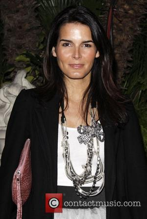 Angie Harmon Puts Plans On Hold For Rizzoli Role