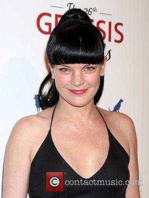 Pauley Perrette's Ex Charged Over Restraining Order Violation