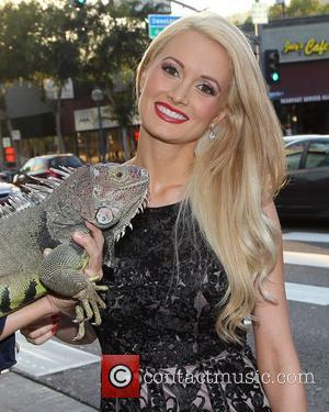 Pregnant Holly Madison Already Experiencing Nausea