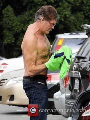 David Hasselhoff's Kitt-style Car Goes On Sale