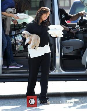 Kerry Washington - Pregnant Kerry Washington carries her dog during a lunch break on the set of her hit TV...
