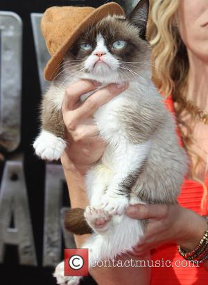 Grumpy Cat - 23rd Annual MTV Movie Awards at the Nokia Theatre - Arrivals - Los Angeles, California, United States...
