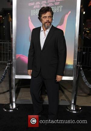 """Benicio Del Toro Had """"A Lot Of Fun"""" Working With Paul Thomas Anderson"""