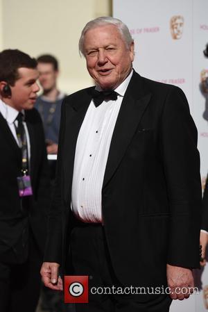 "Sir David Attenborough Slams Bear Grylls For Killing Animals ""Just To Get A Shot"""