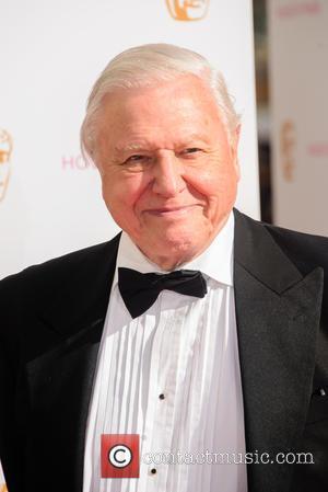 Tributes Paid As Sir David Attenborough Turns 90
