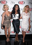 Danity Kane Split After Studio Fight