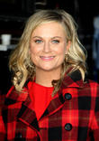 """Amy Poehler Admits She Once Dated John Stamos While """"Separated"""" From Husband Will Arnett"""