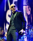 Pitbull Lands Another Shazam Hall Of Fame Induction As Fireball Burns Up